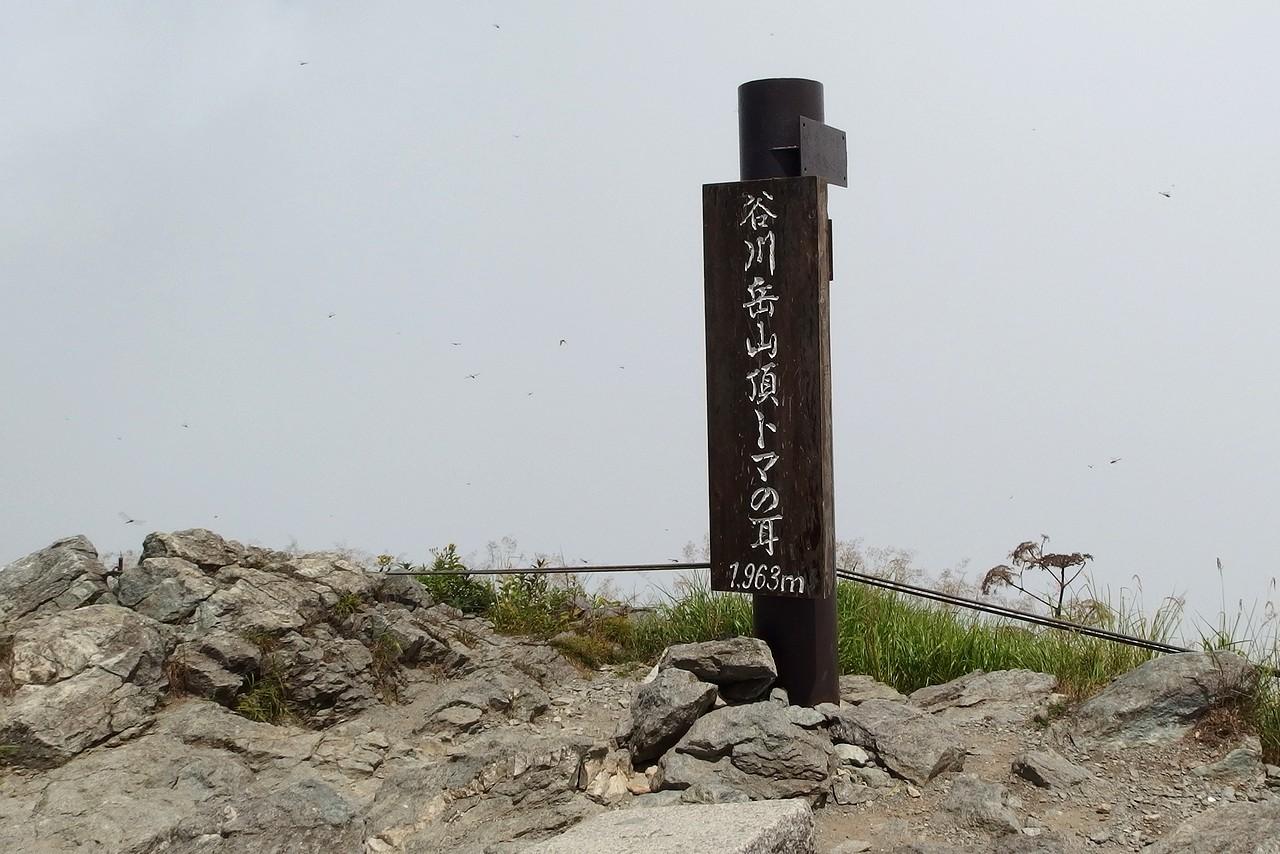 谷川岳トマの耳の山頂標識