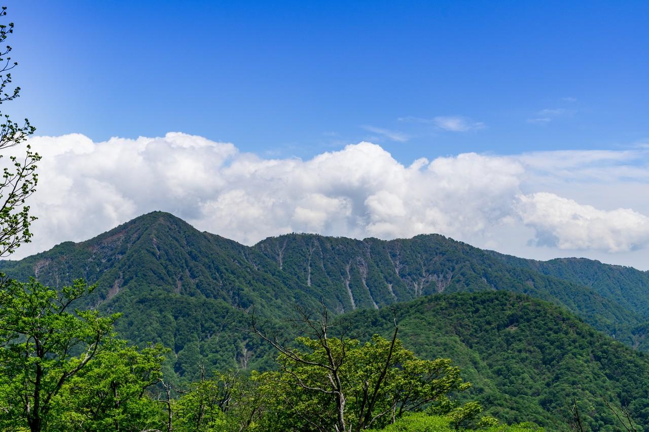 檜洞丸から見た丹沢主稜と蛭ヶ岳