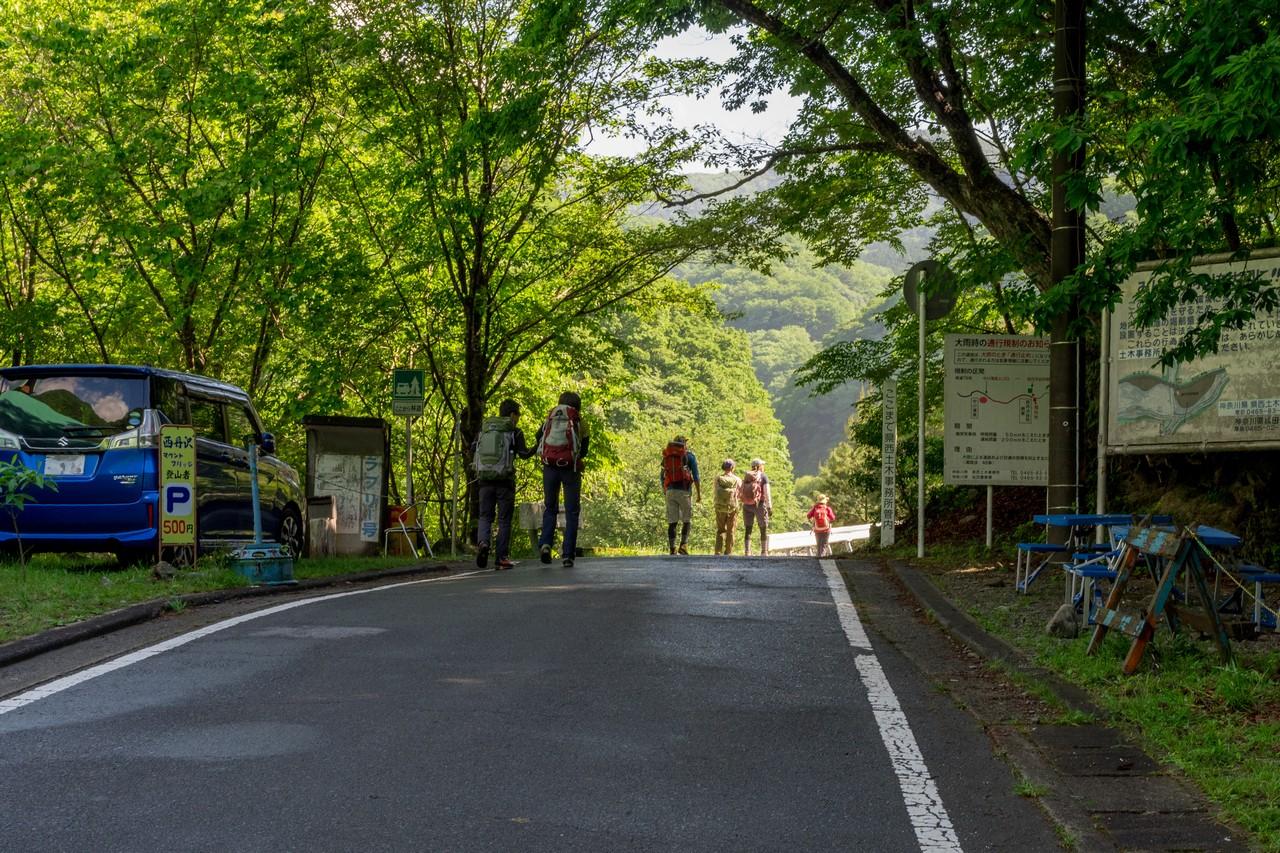 西丹沢の林道