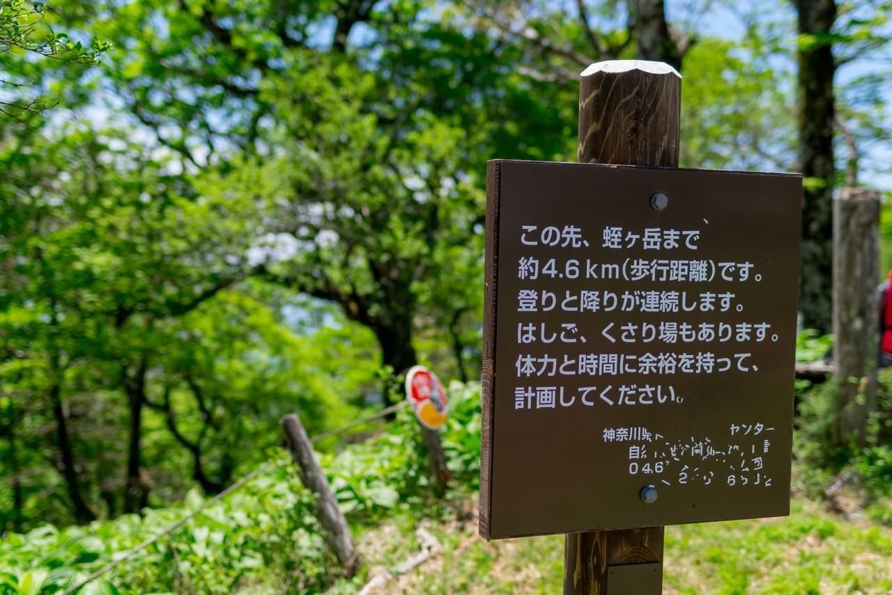 檜洞丸山頂にある丹沢主稜の案内板