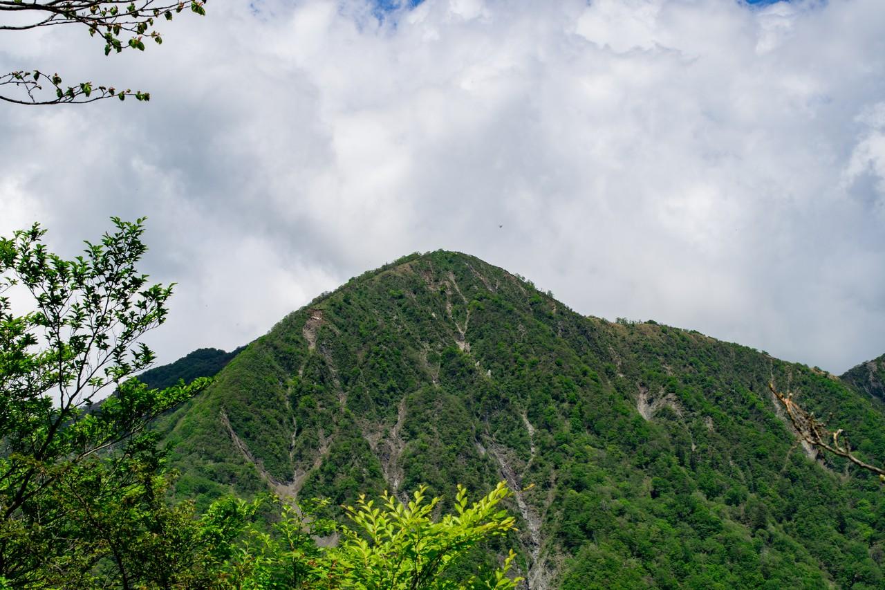 臼ヶ岳の山頂から見た蛭ヶ岳