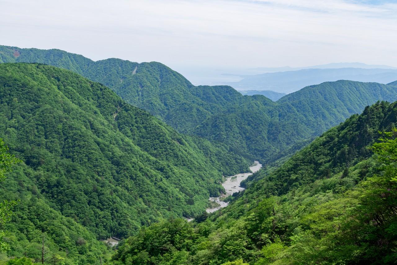 丹沢主稜縦走路のから見た鍋割山陵
