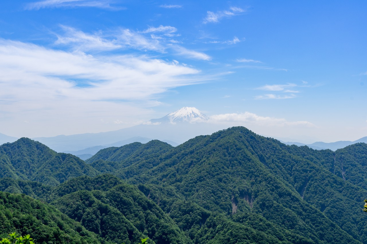 丹沢主稜縦走路から見た富士山