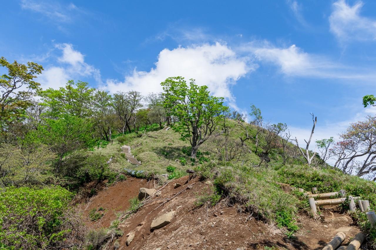 丹沢主稜縦走路からの蛭ヶ岳への登り