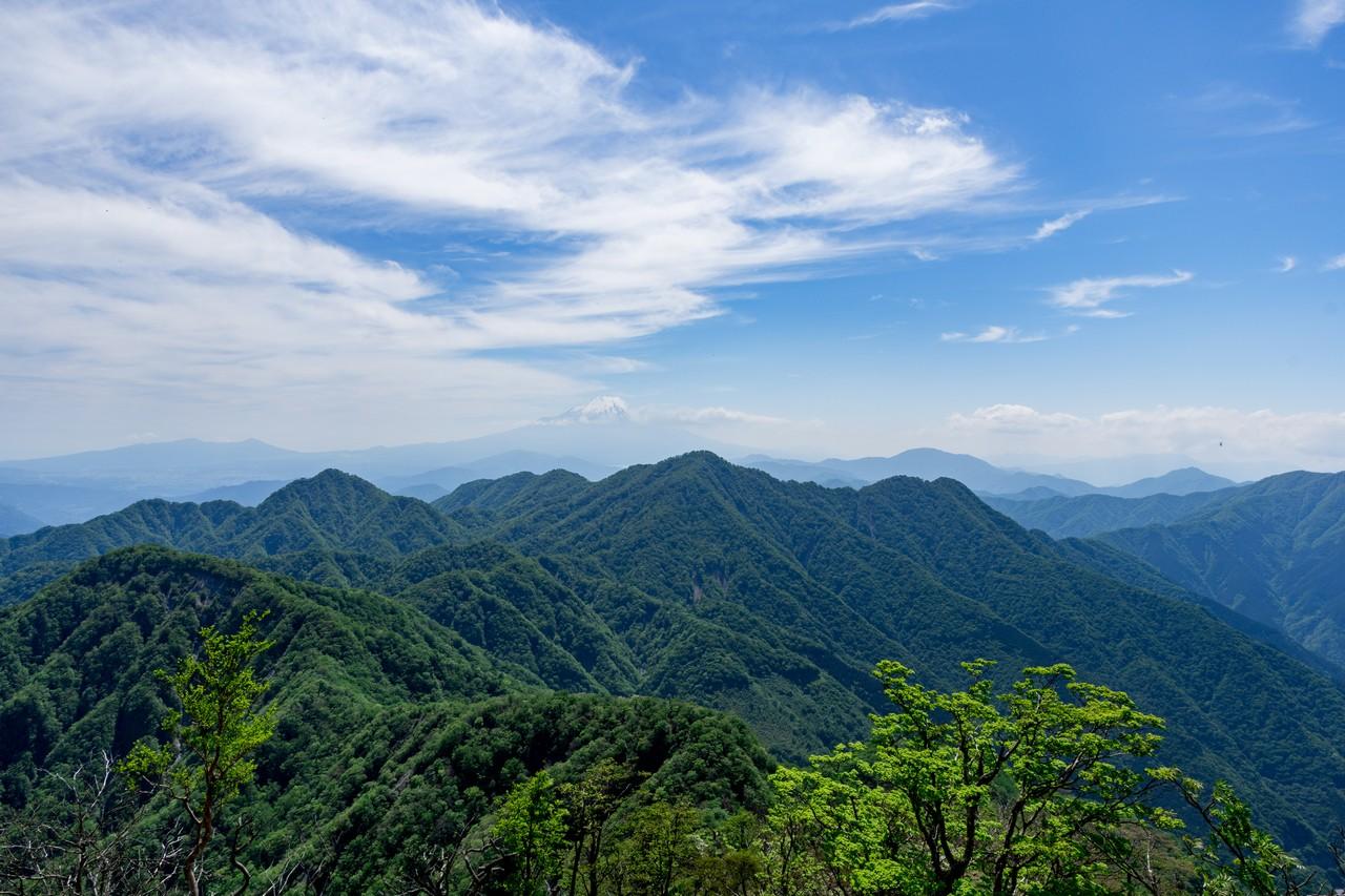 蛭ヶ岳の山腹から見た丹沢主稜
