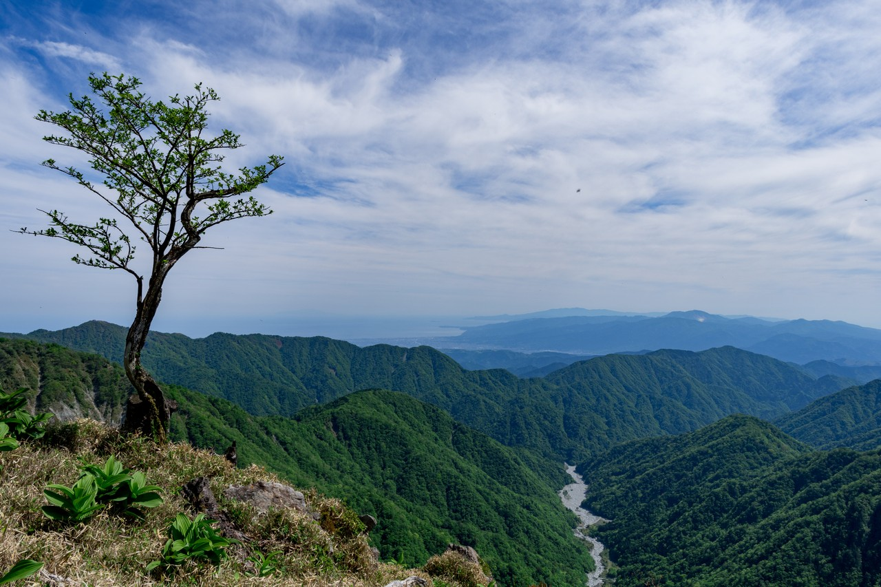 蛭ヶ岳の山腹から見た相模湾