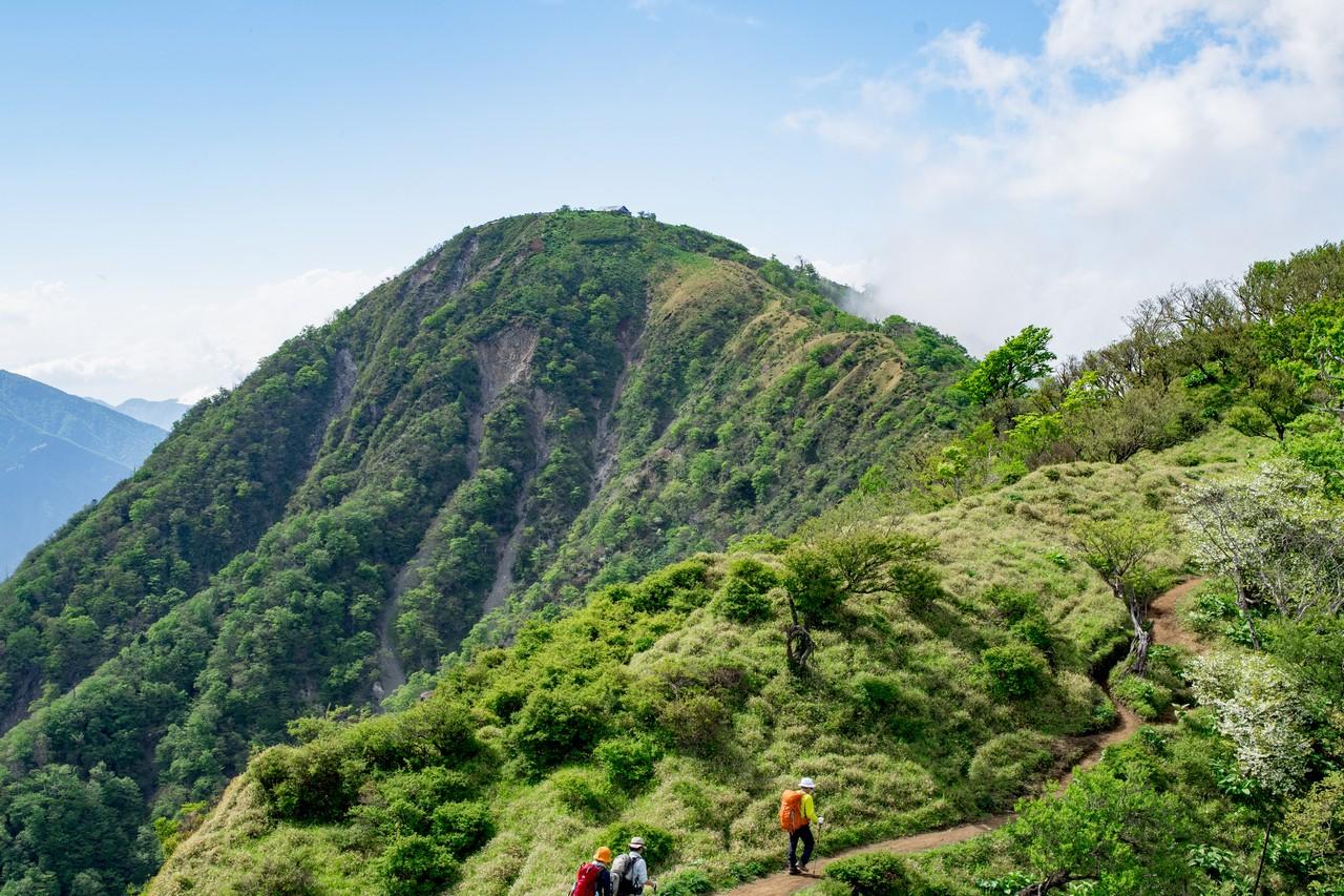丹沢主脈から見た蛭ヶ岳