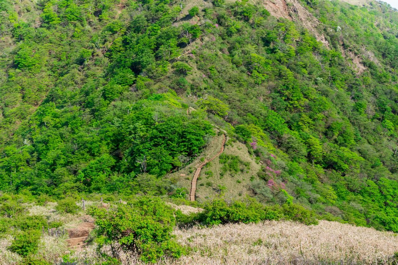不動の峰と丹沢山の間の鞍部