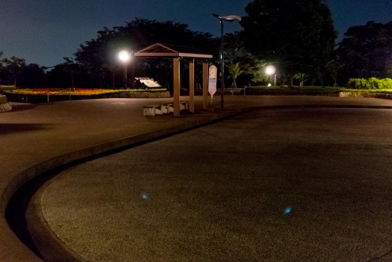 夜の大倉バス停