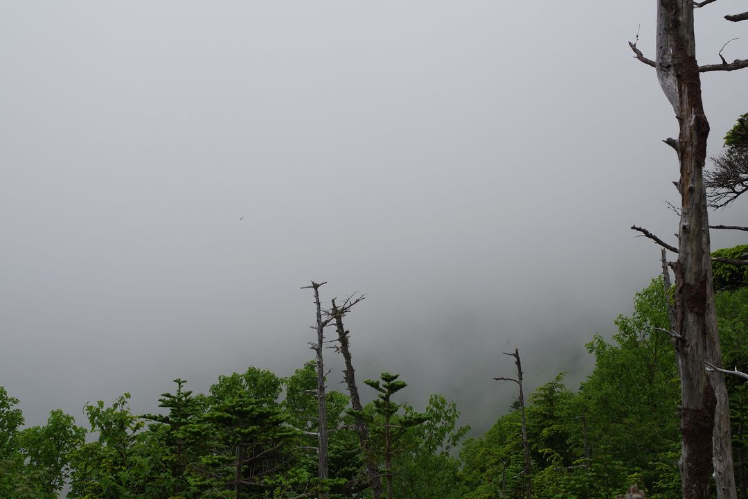 170708女峰山-053