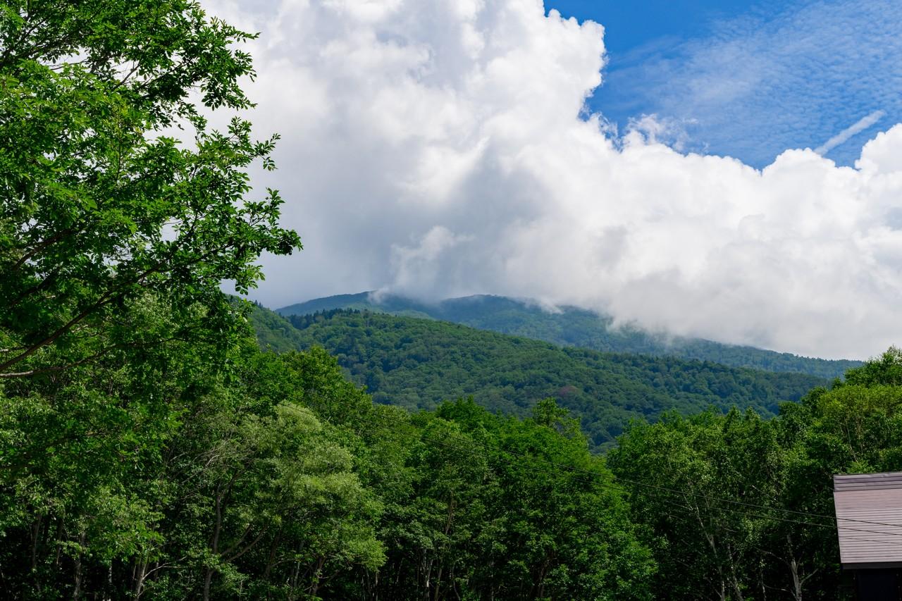 笹ヶ峰から見上げたガスに覆われた妙高山