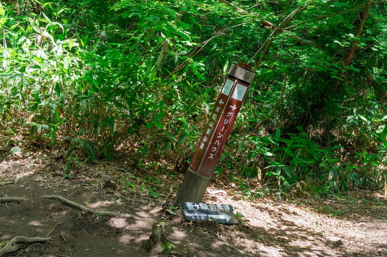 笹ヶ峰コースの傾いた道標