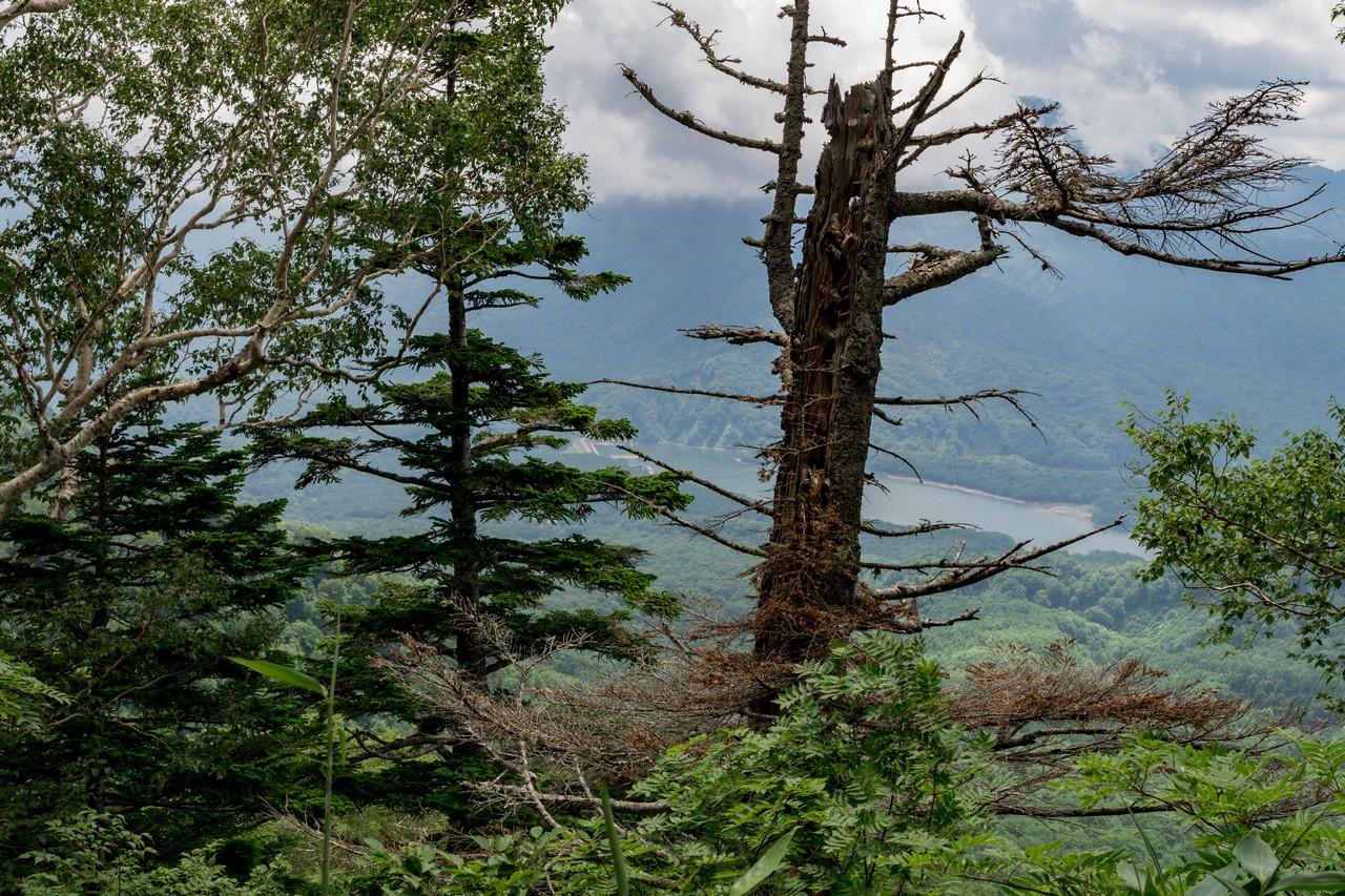 笹ヶ峰コースから見た乙見湖
