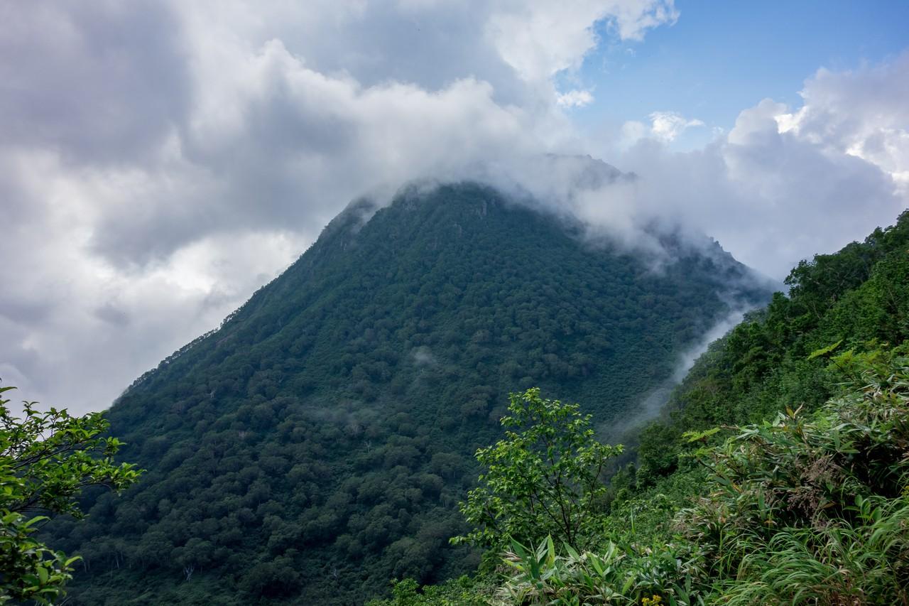 大倉乗越から見た妙高山の山頂