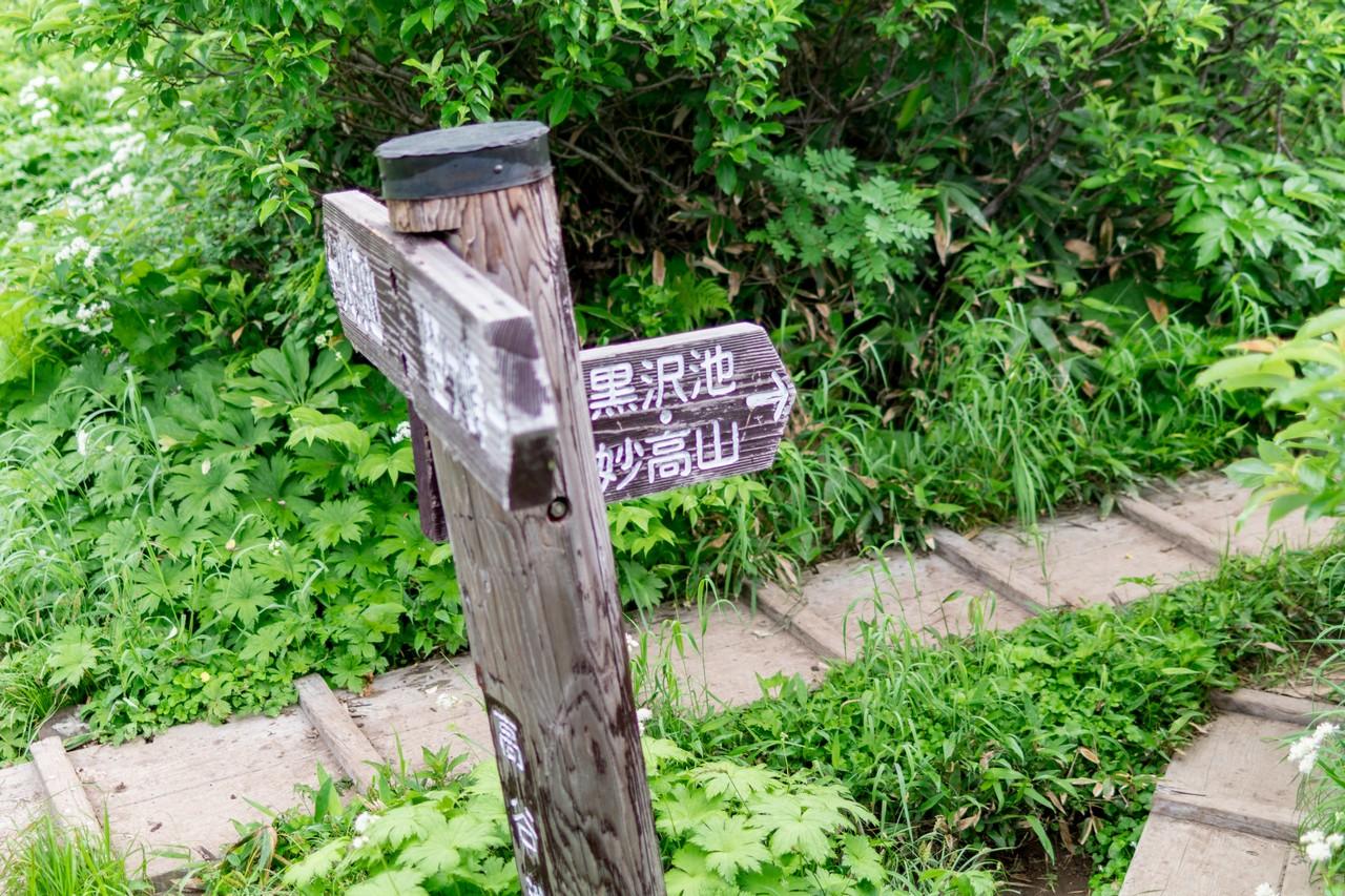 170806妙高山-011