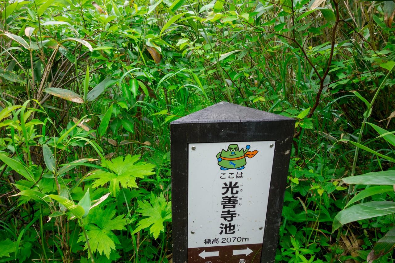 170806妙高山-086