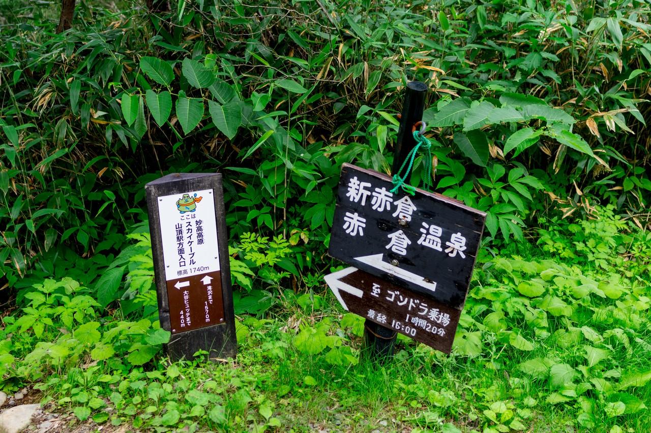 170806妙高山-099