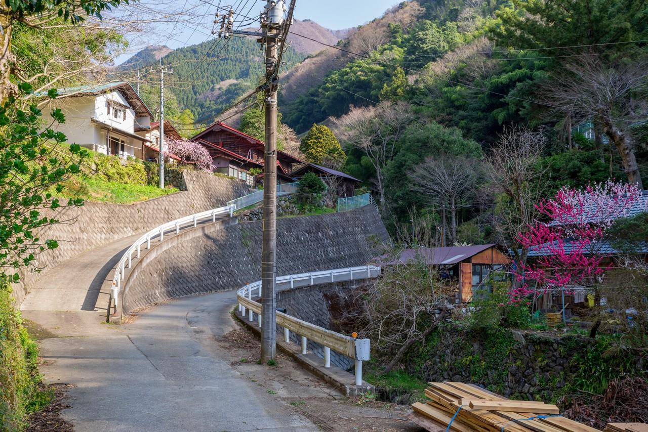 200406生藤山_021