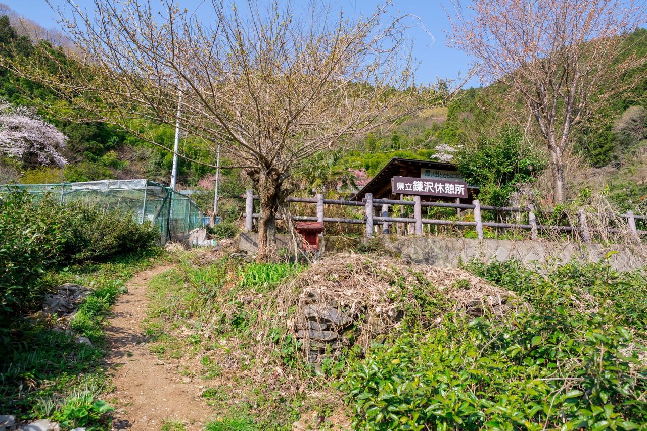 200406生藤山_033