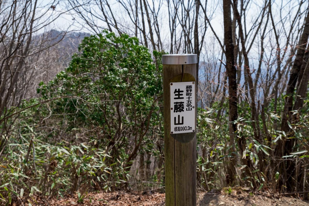 200406生藤山_063