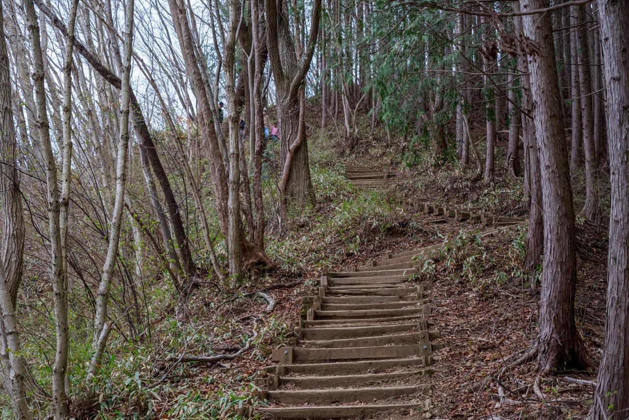 200406生藤山_092