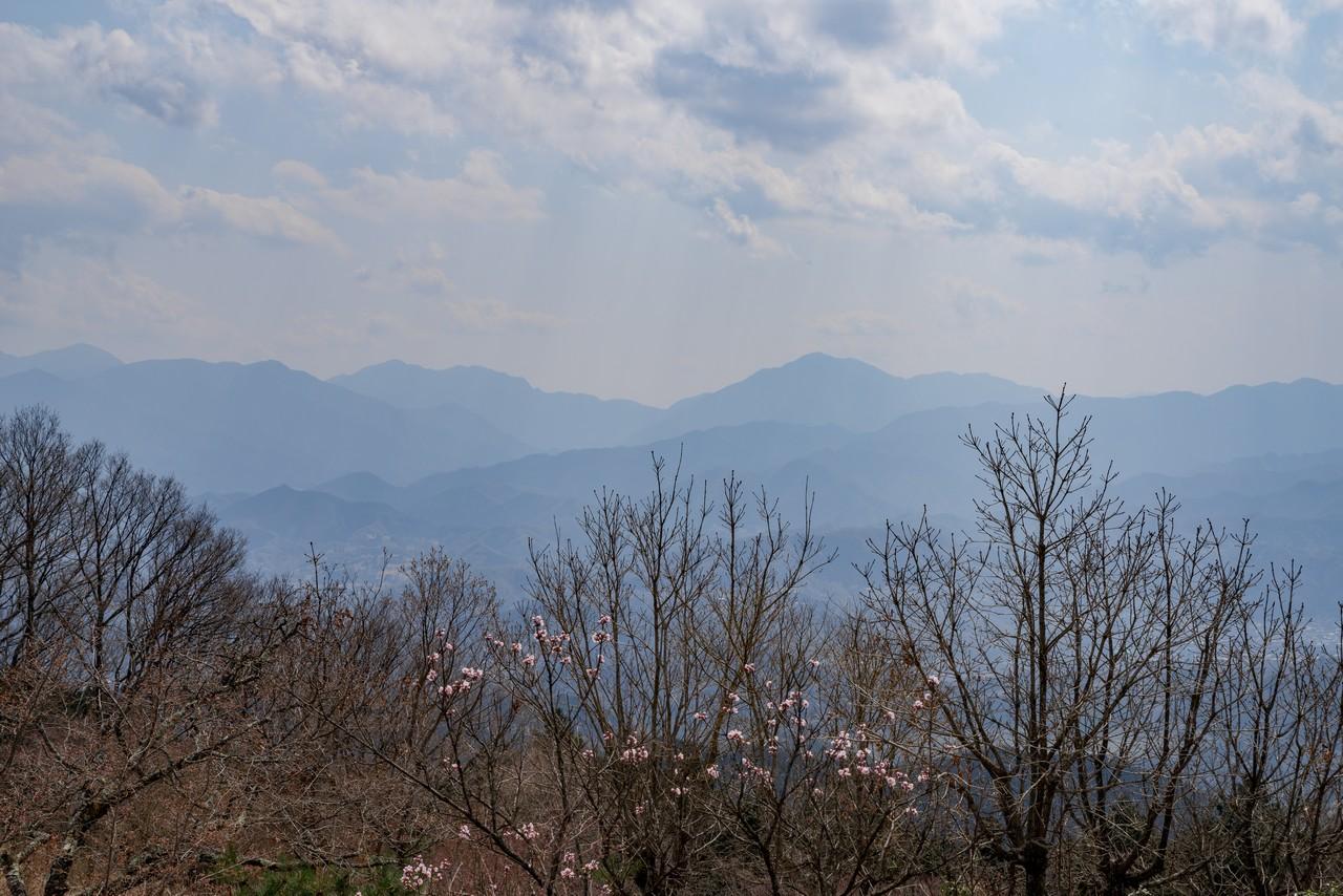 200406生藤山_097