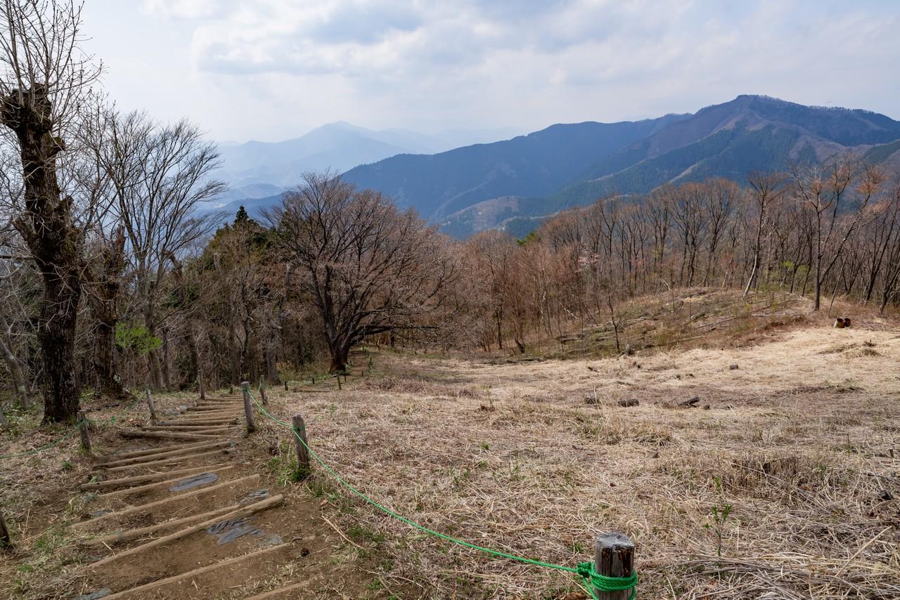 200406生藤山_098