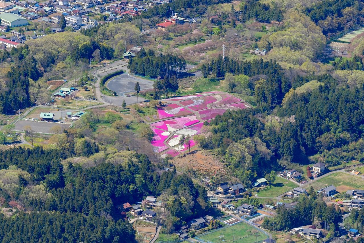 武甲山から見た羊山公園