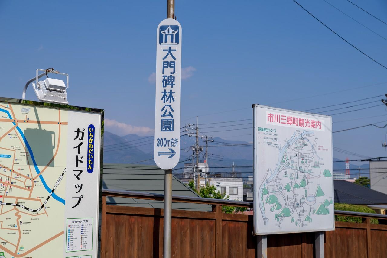 200426蛾ヶ岳-013