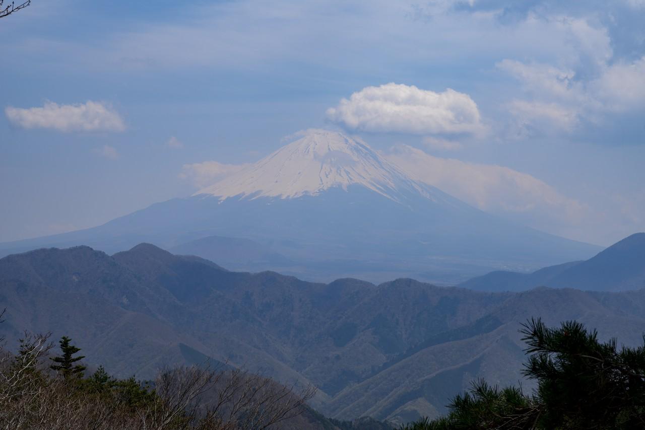 200426蛾ヶ岳-064