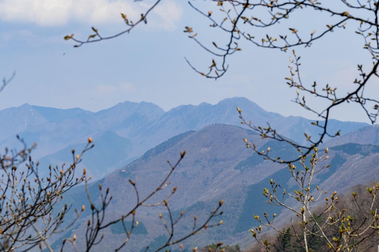 200426蛾ヶ岳-072