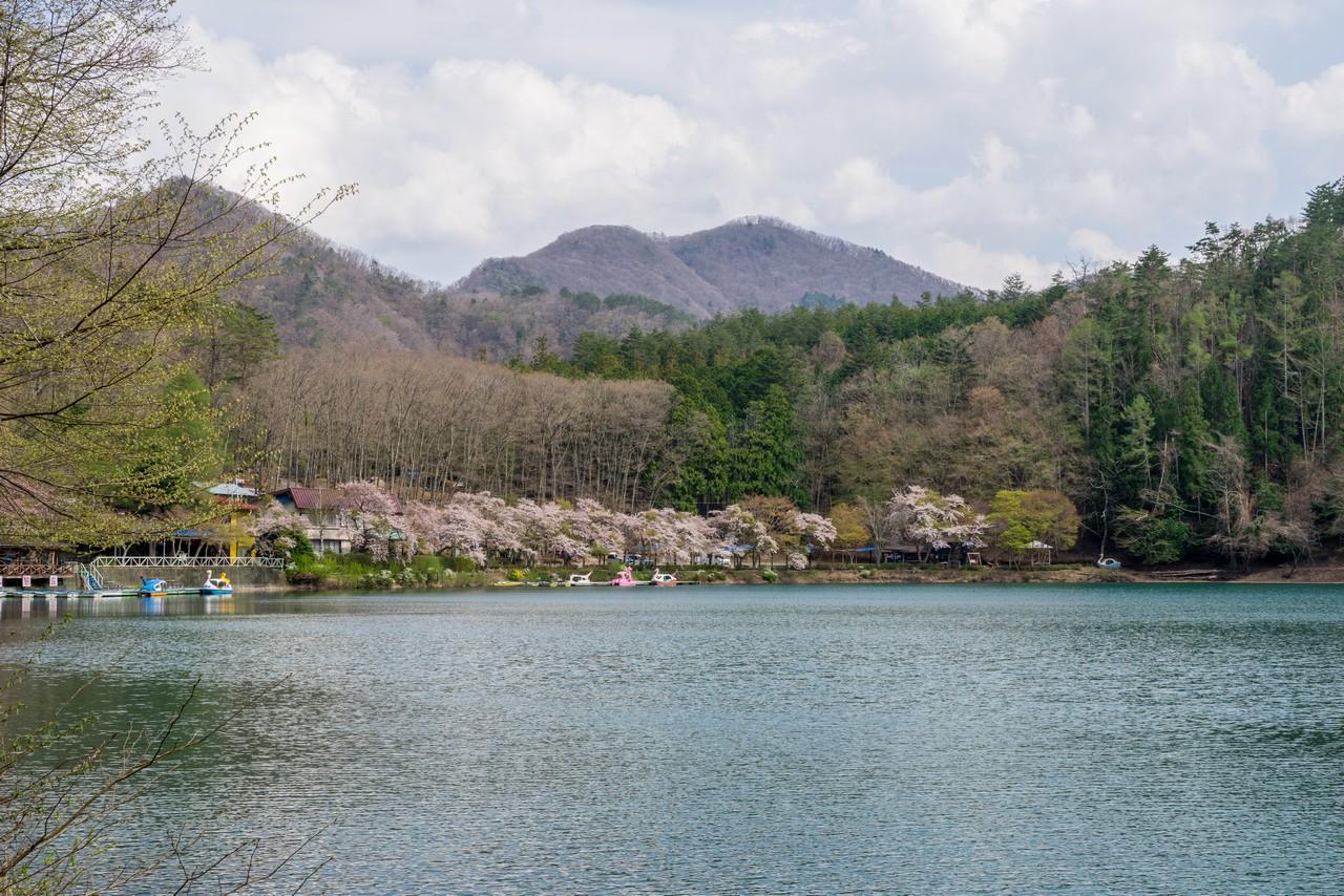 200426蛾ヶ岳-088
