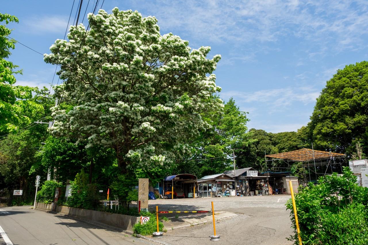 深大寺の有料駐車場