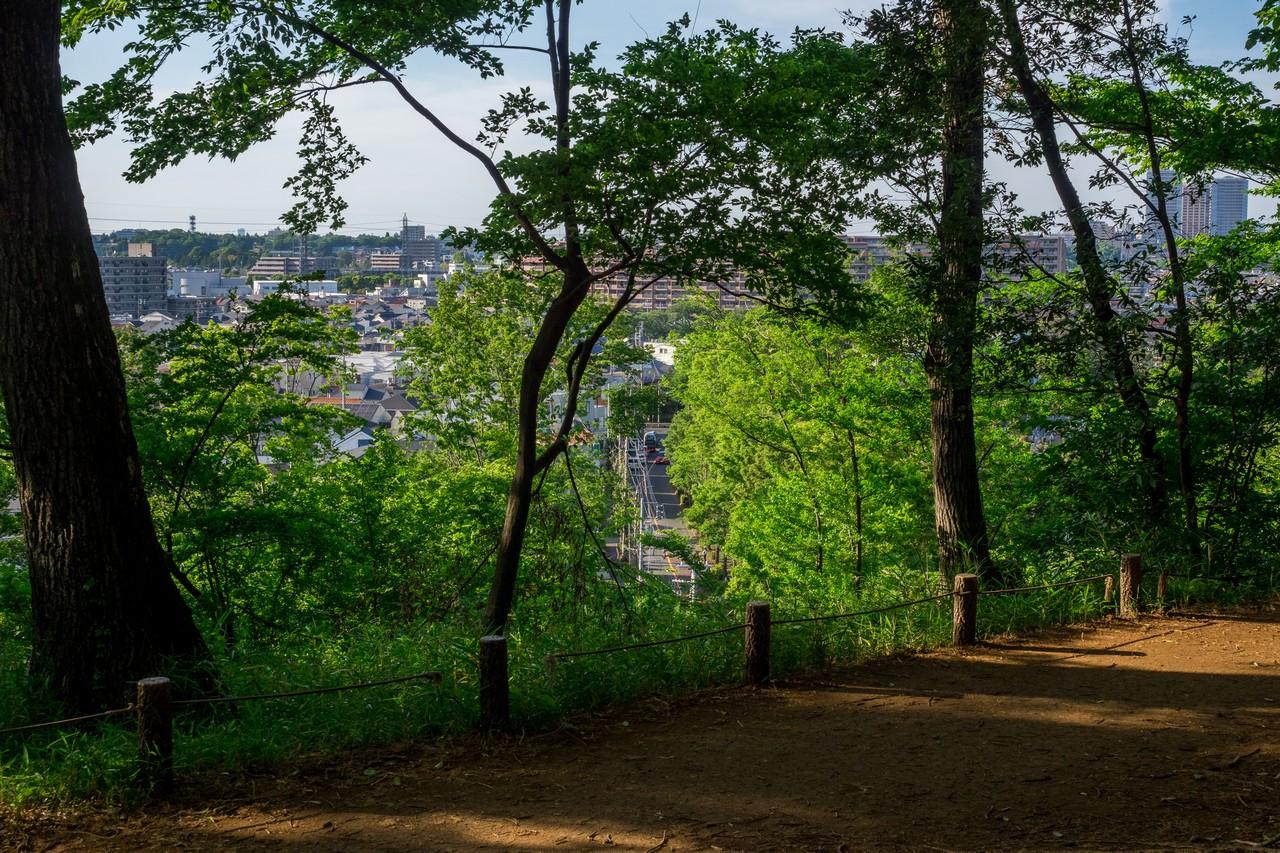 200508浅間山公園-003