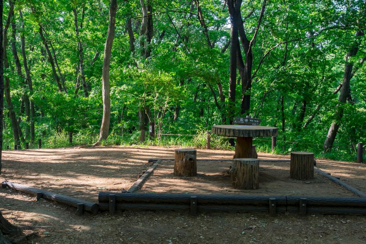 200508浅間山公園-014