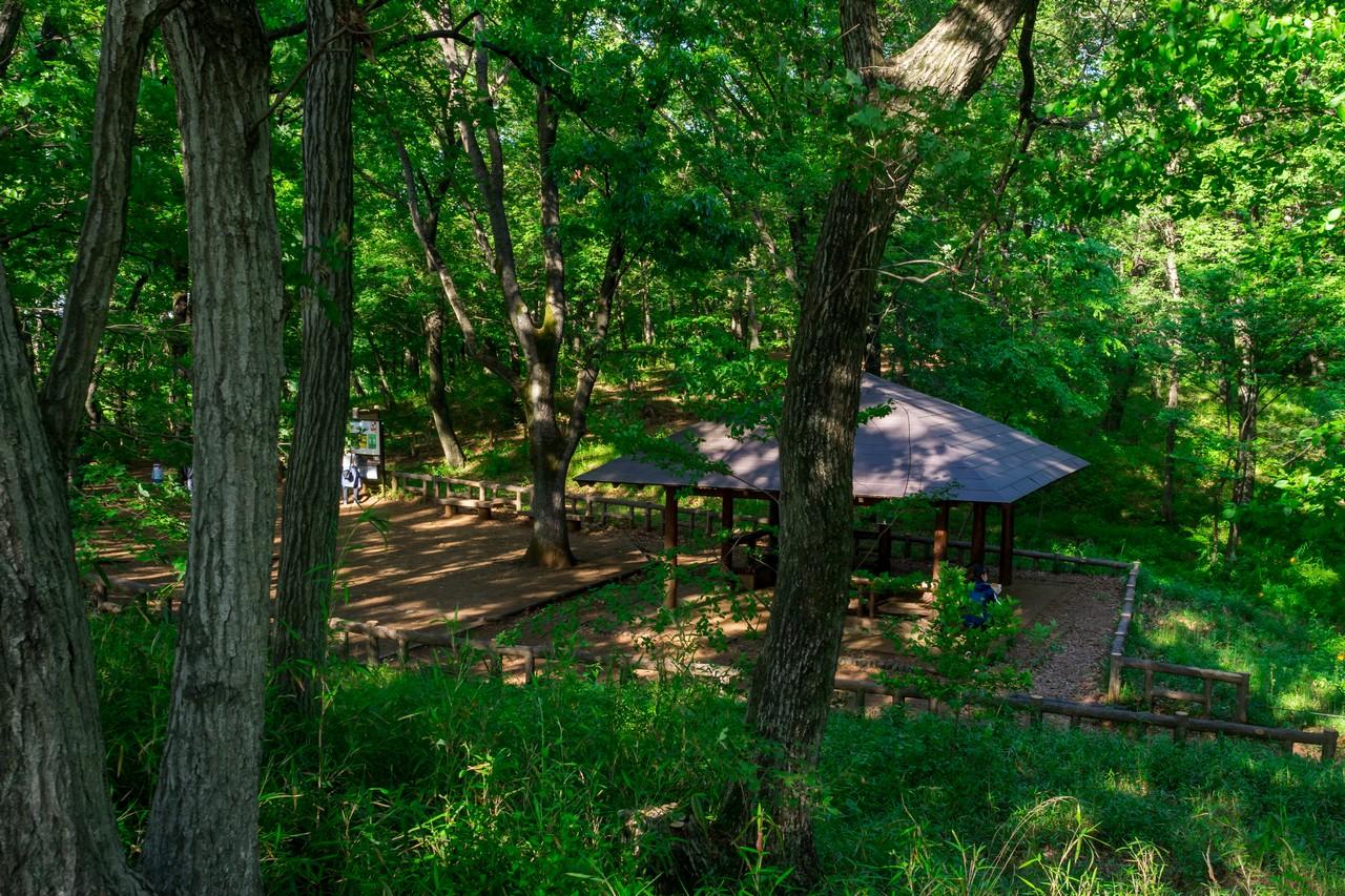 200508浅間山公園-022