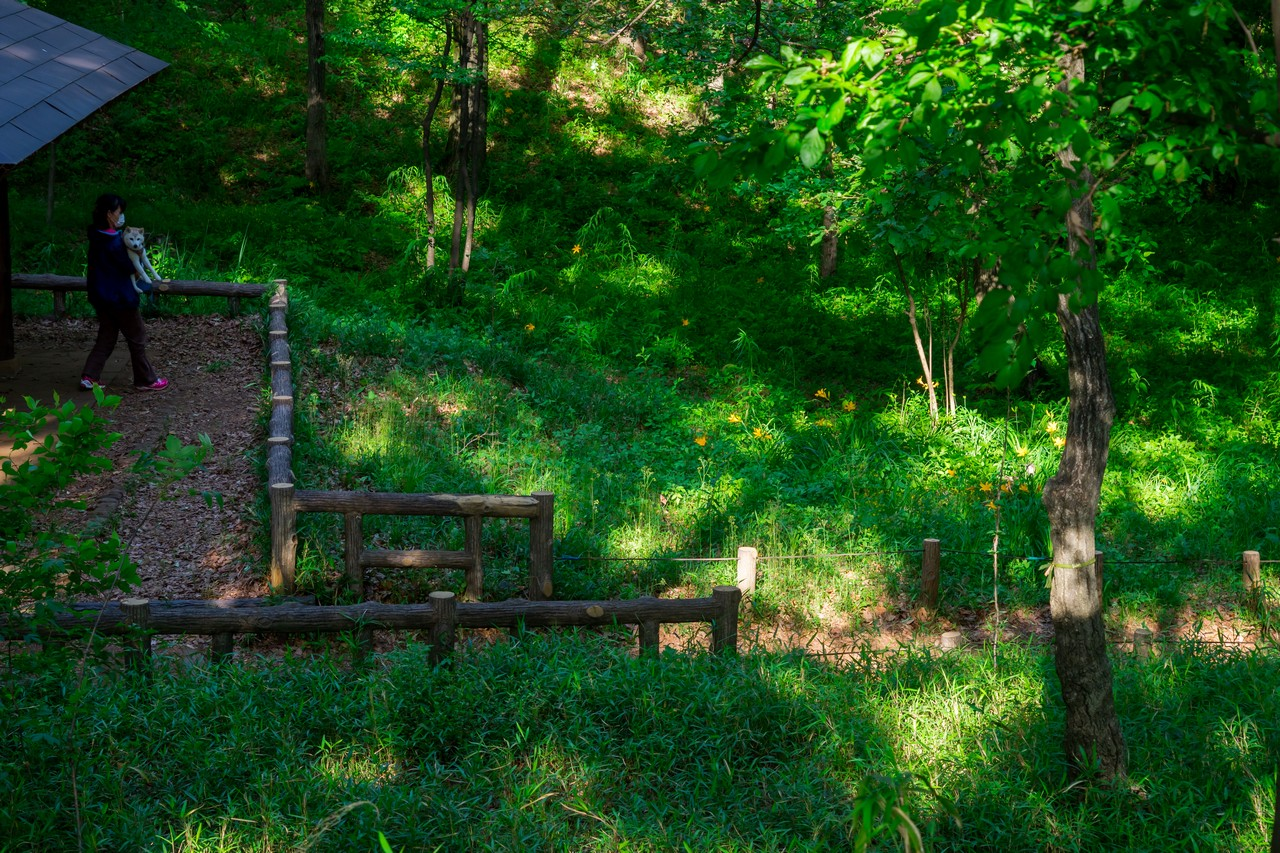 200508浅間山公園-023