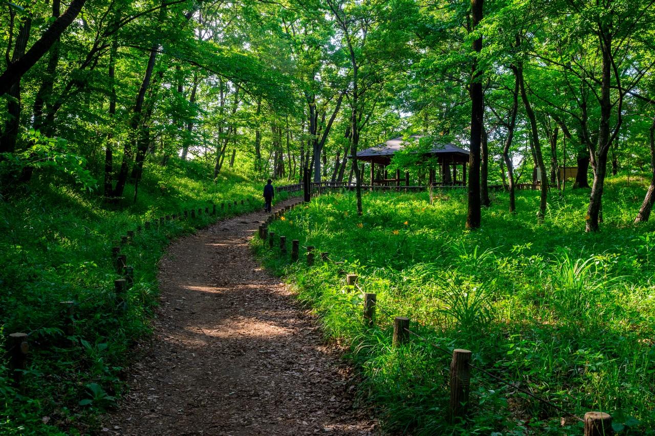 200508浅間山公園-024