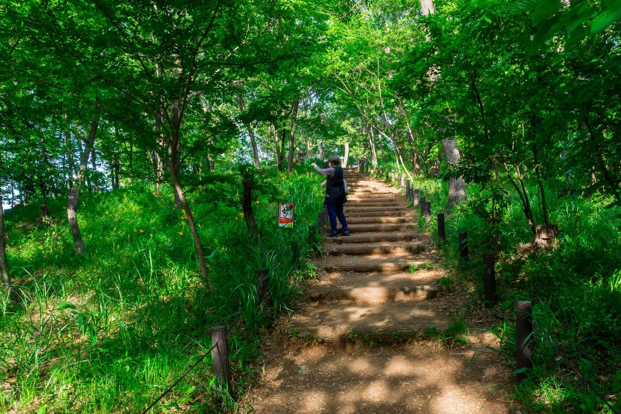 200508浅間山公園-034