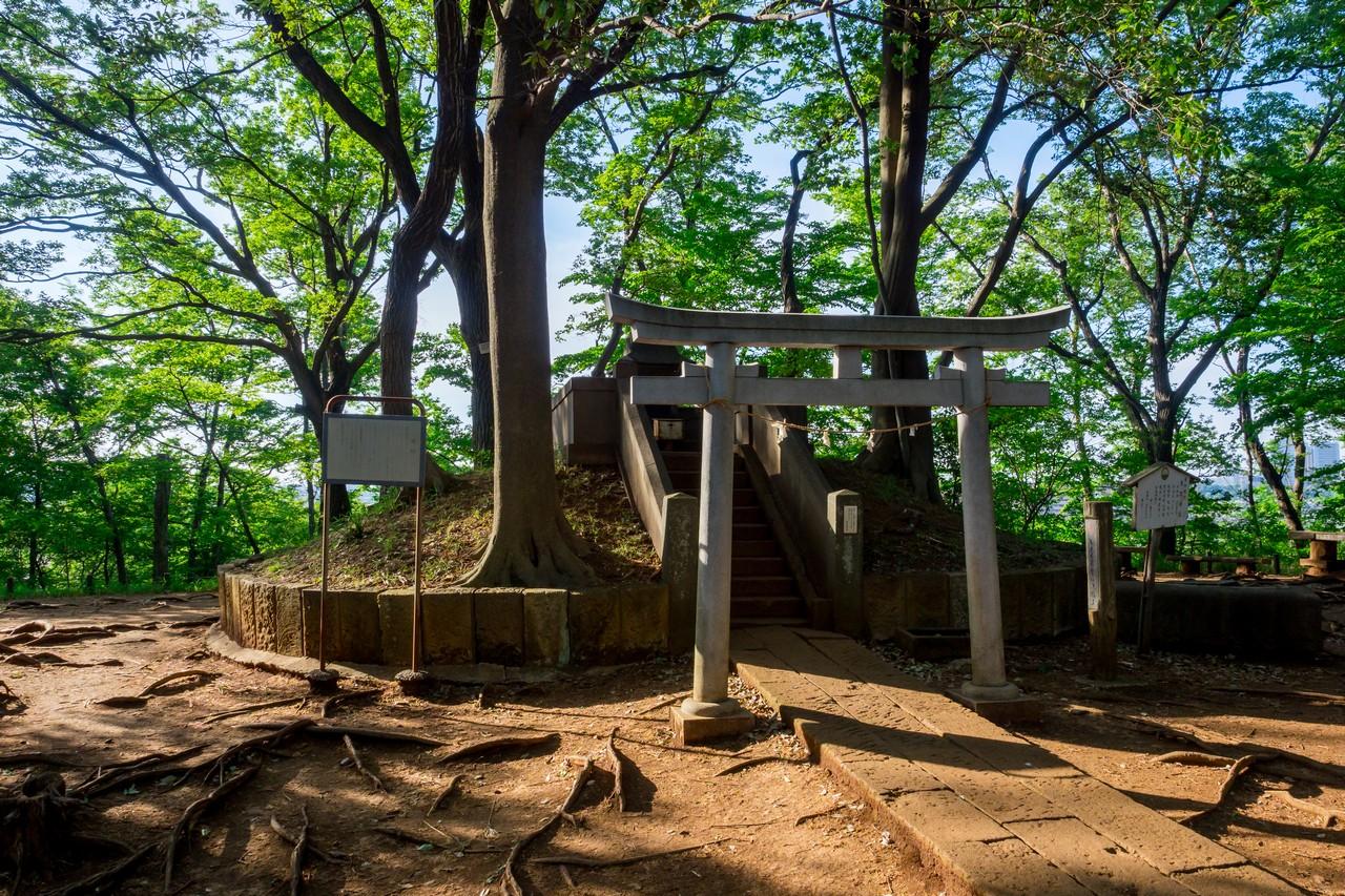 200508浅間山公園-042