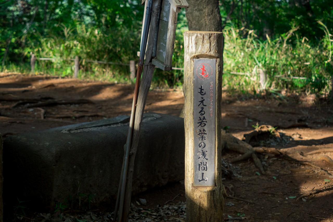 200508浅間山公園-043