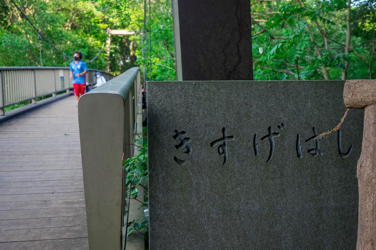 200508浅間山公園-049