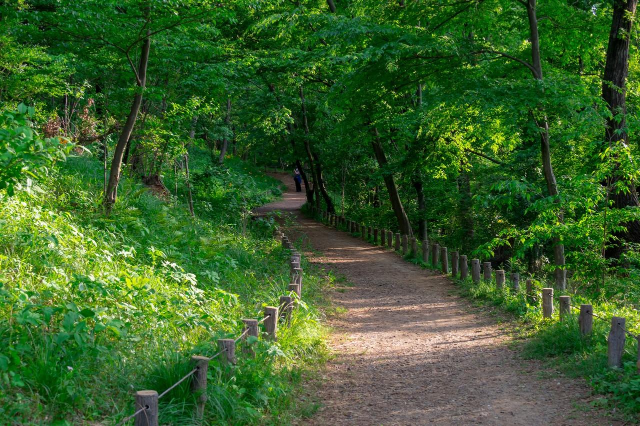 200508浅間山公園-051