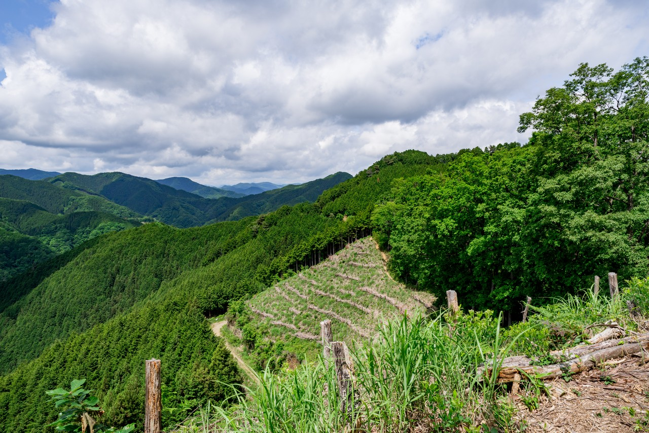 200524戸倉三山-001