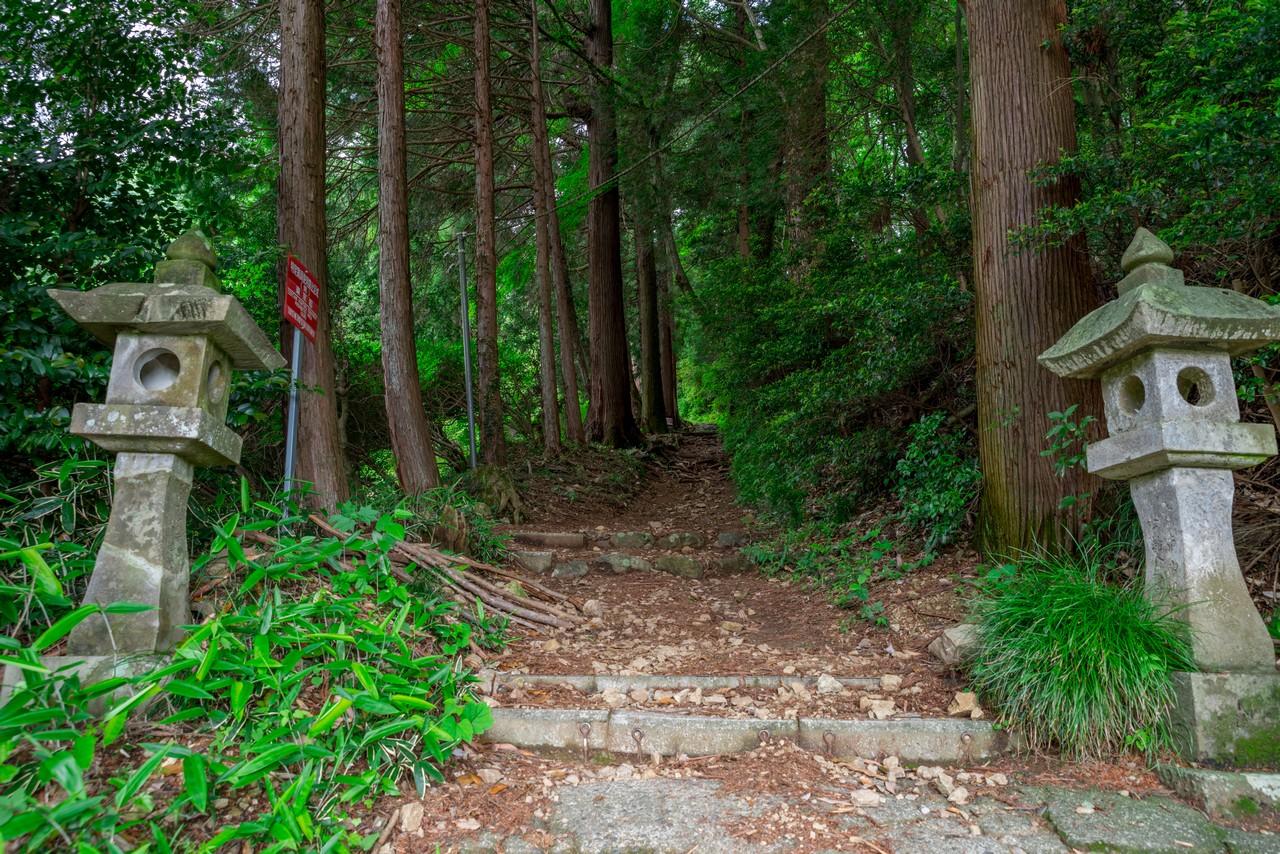200524戸倉三山-017