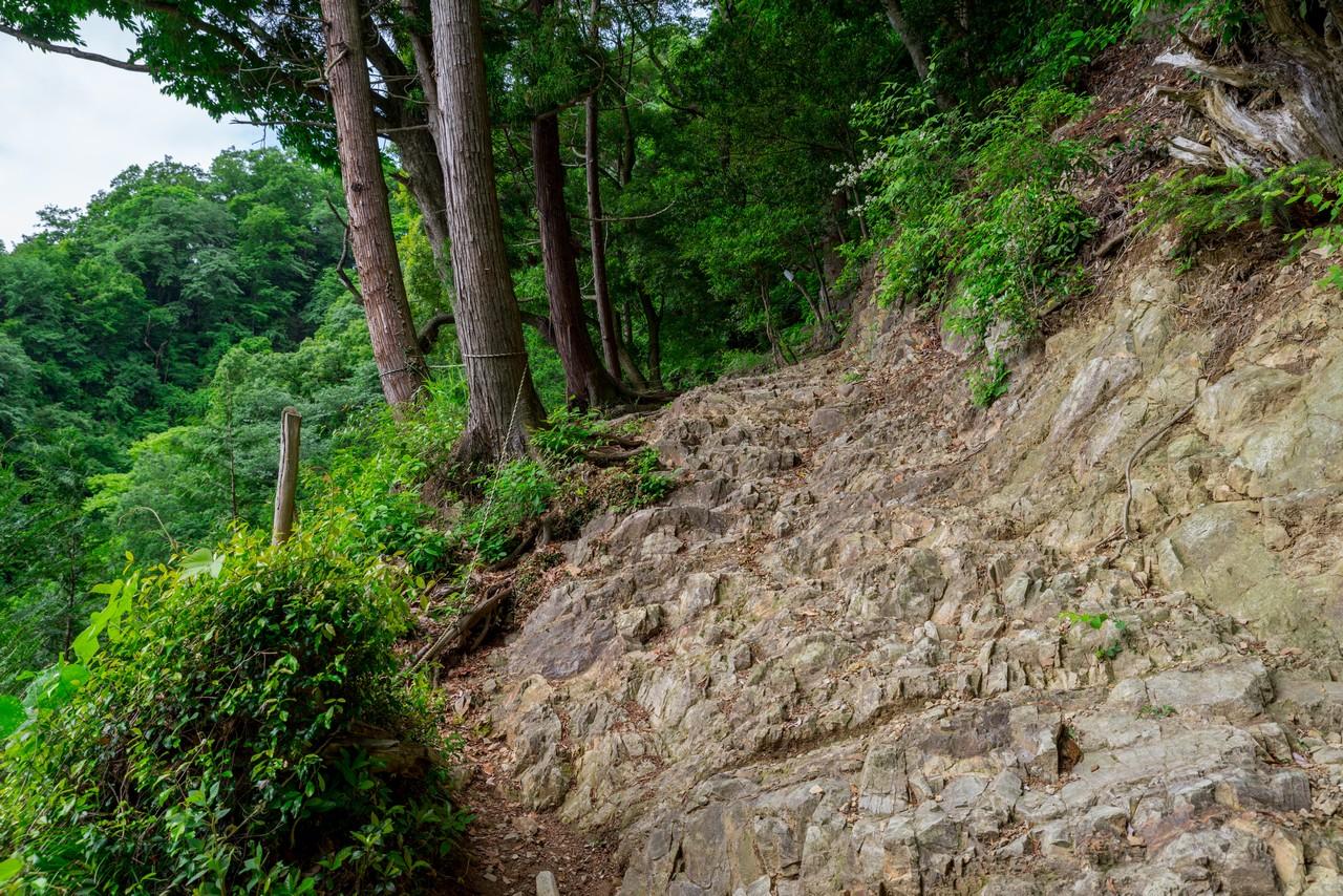 200524戸倉三山-021
