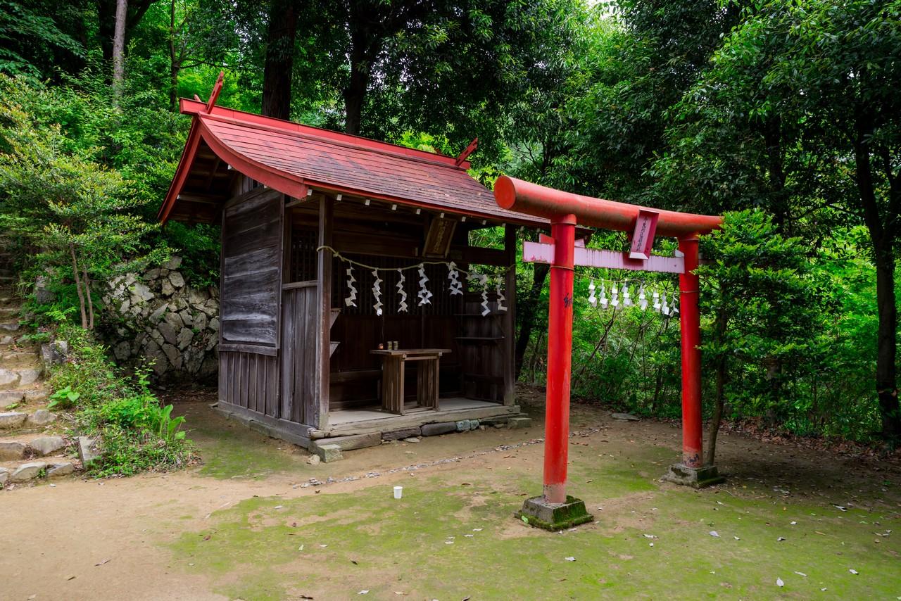 200524戸倉三山-031