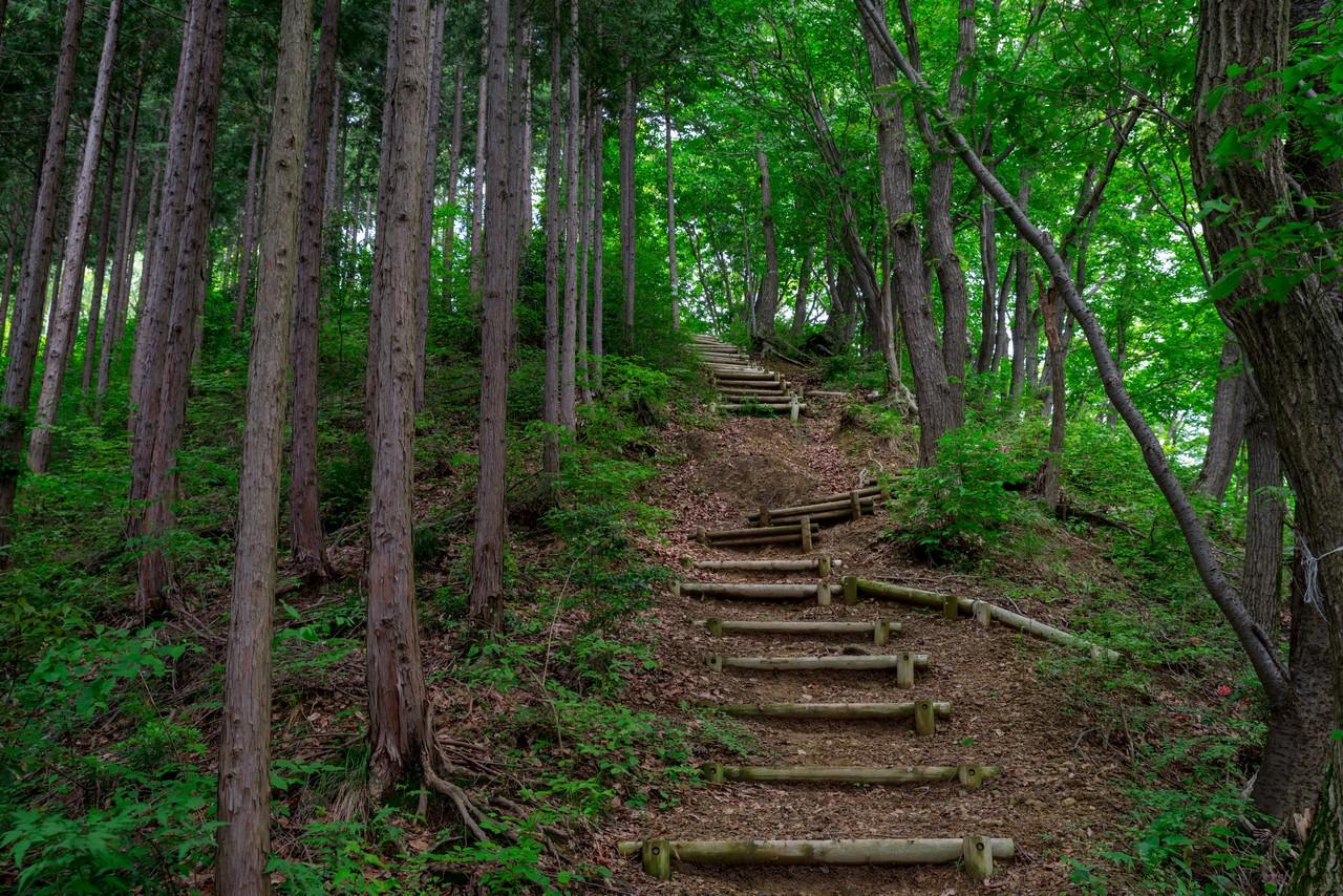 200524戸倉三山-050