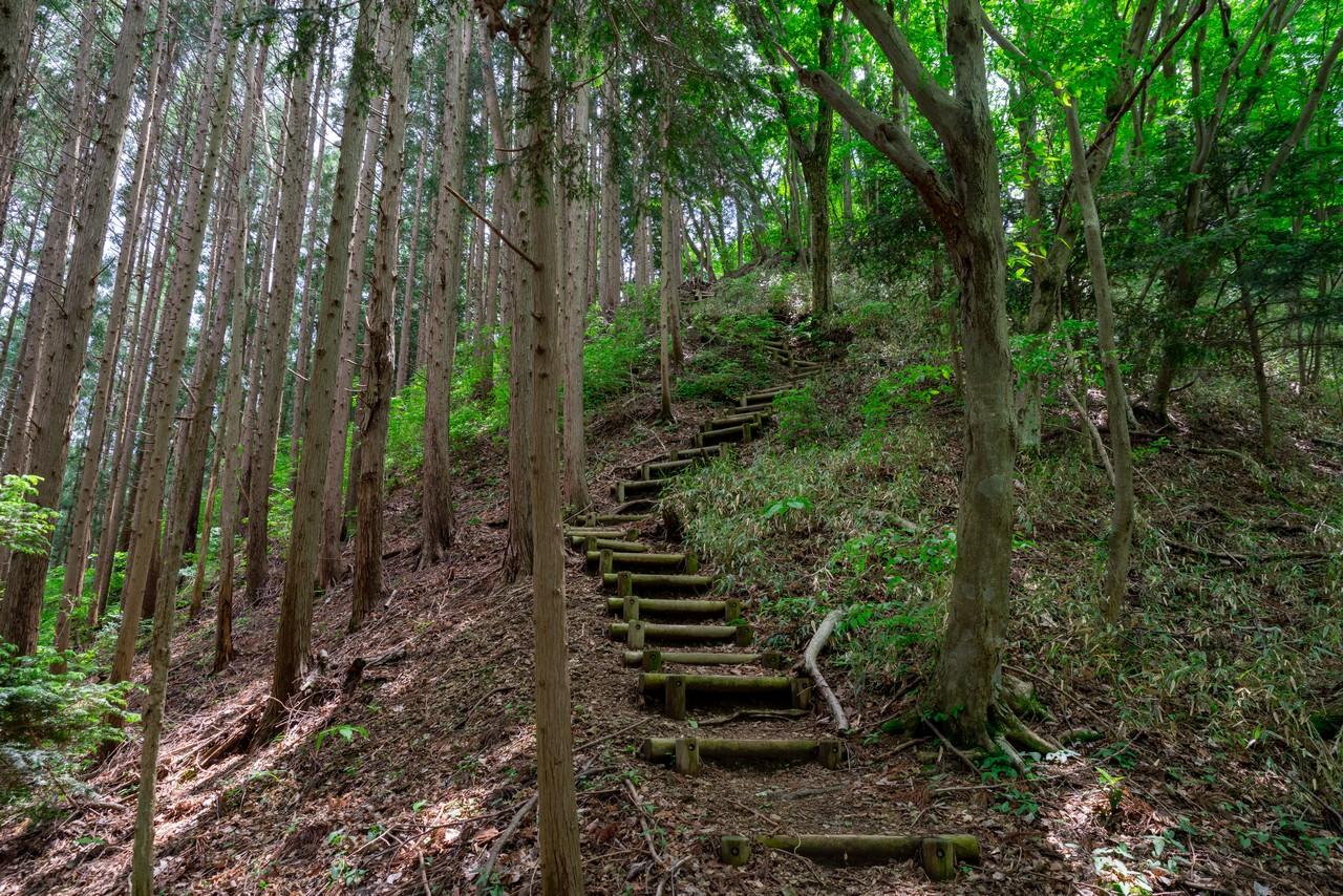 200524戸倉三山-067