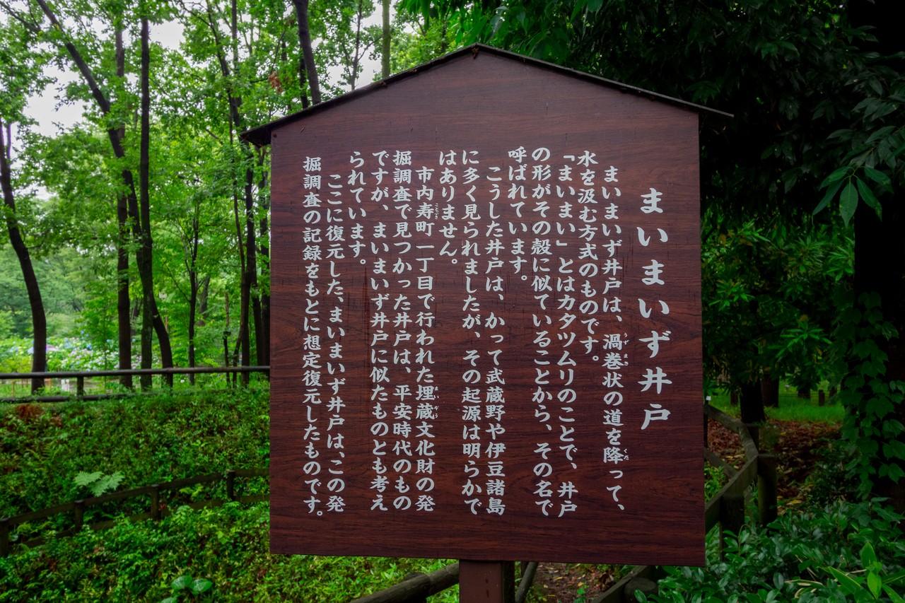 200614郷土の森_052